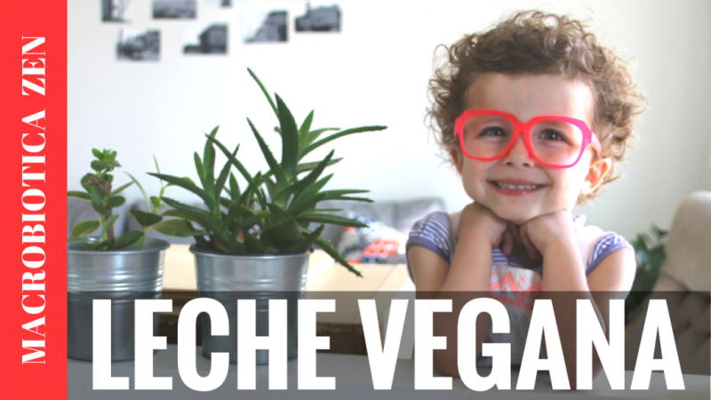 LECHES VEGETALES NO TAN SALUDABLES